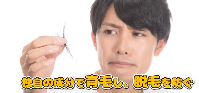 独自の成分で育毛し、脱毛を防ぐ